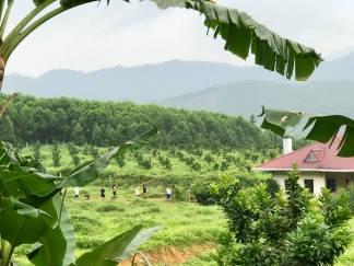 Blue Dragon Farm Vietnam Tara Richter